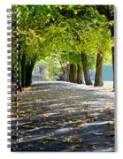 Alley With Falling Leaves In Fall Park Spiral Notebook
