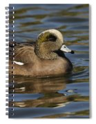 American Widgeon Spiral Notebook
