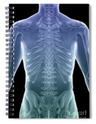 Bones Of The Torso Spiral Notebook
