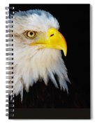 Closeup Portrait Of An American Bald Eagle Spiral Notebook