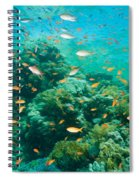 Coral Reef Spiral Notebook