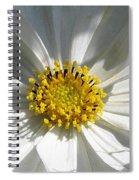 Cosmos Named Sensation Alba Spiral Notebook