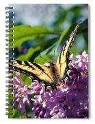 Expectation Of The Dawn Spiral Notebook