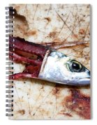 Fish Bait Spiral Notebook