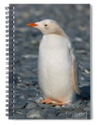 Gentoo Penguin Spiral Notebook