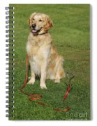Golden Retriever Dog Spiral Notebook