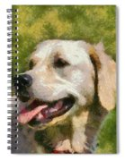 Golden Retriever Portrait Spiral Notebook