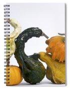 Gourds And Pumpkins Spiral Notebook