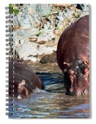 Hippopotamus In River. Serengeti. Tanzania Spiral Notebook