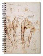 Leonardo: Anatomy, C1510 Spiral Notebook