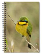 Little Bee-eater Spiral Notebook
