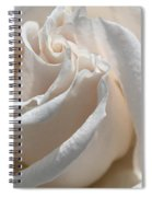 Long-stemmed White Rose Spiral Notebook
