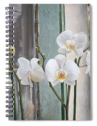 4 Orchidee Spiral Notebook