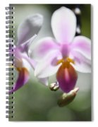Orchids Dance Spiral Notebook