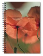 Poppy Meadow Spiral Notebook