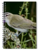 Red-eyed Vireo Spiral Notebook