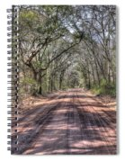 Road To Angel Oak Spiral Notebook