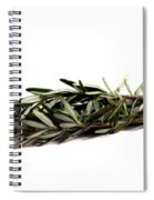 Rosemary Spiral Notebook