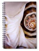 Seashell Detail Spiral Notebook