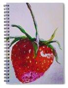 Single Strawberry Spiral Notebook