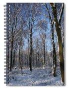 Snowy Landscape Spiral Notebook