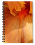 Tall Bearded Iris Named Penny Lane Spiral Notebook