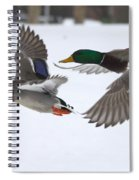 The Great Race Spiral Notebook