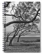 The Reach Spiral Notebook
