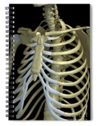 The Rib Cage Spiral Notebook