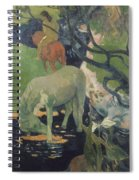 The White Horse Spiral Notebook