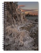Tufa Formations, Mono Lake, Ca Spiral Notebook