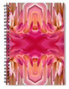 Valley Porcupine Abstract Spiral Notebook
