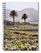 Vineyard On Lanzarote Spiral Notebook