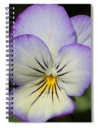 Viola Named Sorbet Lemon Blueberry Swirl Spiral Notebook