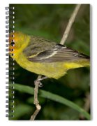 Western Tanager Spiral Notebook