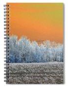 Winter Woods Spiral Notebook