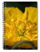 Yellow Iceland Poppy Spiral Notebook