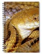 Yellow Rat Snake Spiral Notebook