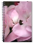 Zonal Geranium Named Tango Light Orchid Spiral Notebook