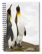 King Penguins Spiral Notebook