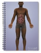 Human Anatomy Spiral Notebook