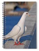 21- White Dove Spiral Notebook