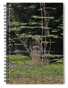 44- Alligator - Great Blue Heron Spiral Notebook