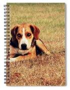 4610 Spiral Notebook