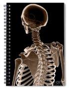 Bones Of The Upper Body Spiral Notebook