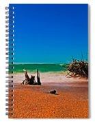 4x1 Florida Beach Panorama 732 Spiral Notebook