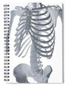 Bones Of The Torso Spiral Notebook