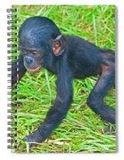 Bonobo Baby Spiral Notebook