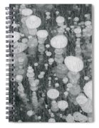 Bubbles In Ice On Abraham Lake Spiral Notebook