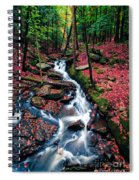 Chesterfield Gorge New Hampshire Spiral Notebook